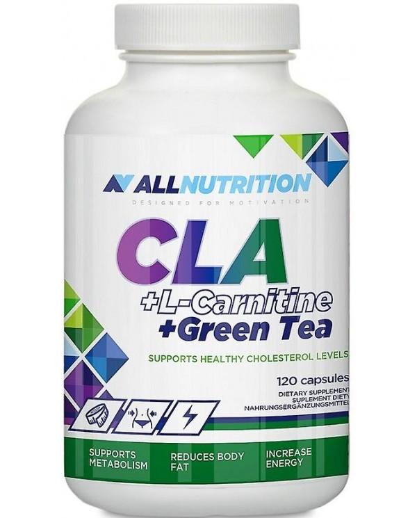 All Nutrition - CLA + L-Carnitine + Green tea (120capsules)
