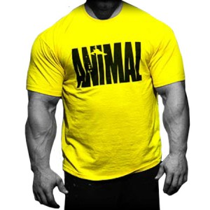 Animal Iconic T-shirt Yellow